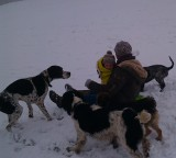 dog walkers and dogs playing in the snow